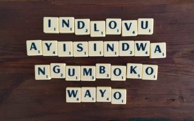 Indlovu ayisindwa ngumboko wayo – You can handle anything thrown at you
